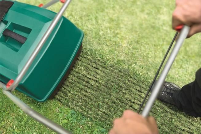 gødning græsplæne