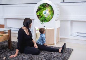 OGarden Smart dyrker friske økologiske grøntsager året rundt i dit hus