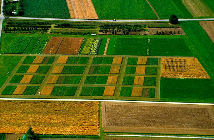 Økologisk landbrug begrænser klimaændringerne