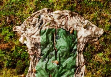 Bionedbrydelig t-shirt fra planter.