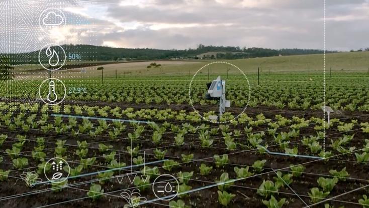 Robot gør øko landbrug smartere