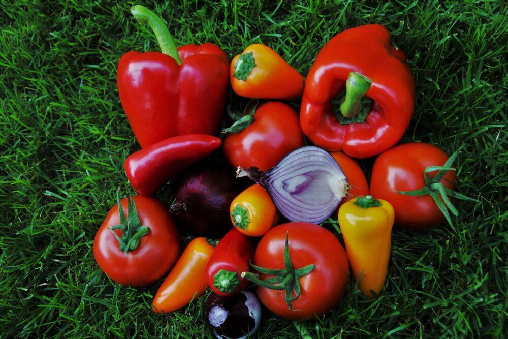 Madspild: spiselig film kan holde maden frisk og fri for bakteria
