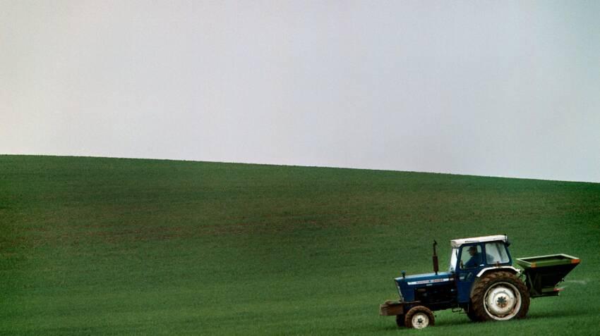 For meget kvælstof er dårligt for miljøet