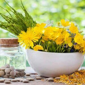 Hvad er holistisk og individuel pleje
